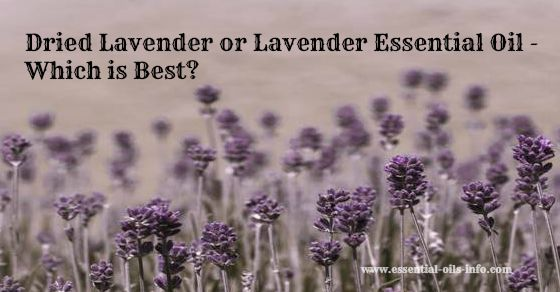 how to make lavender water from dried lavender